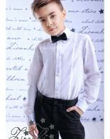 """Детская рубашка """"Style-1"""" Zironka"""